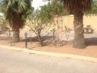 10 Bedrooms Villa in Khalifa City A